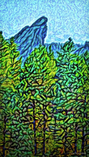 Digital Art - Vista Through The Woods by Joel Bruce Wallach