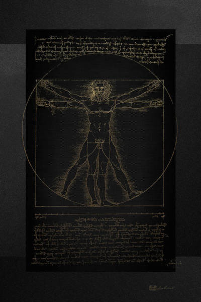 Digital Art - Vitruvian Man By Leonardo Da Vinci In Gold On Black by Serge Averbukh