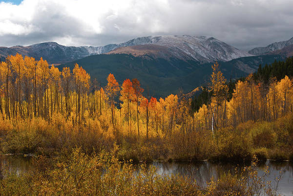 Photograph - Vivid Autumn Aspen And Mountain Landscape by Cascade Colors
