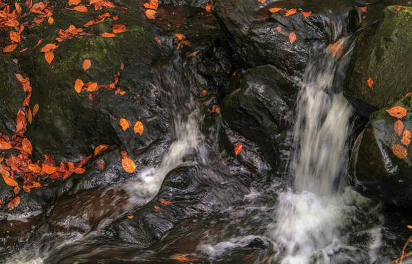 Photograph - Vivid Autumn Waterfall by Dan Sproul