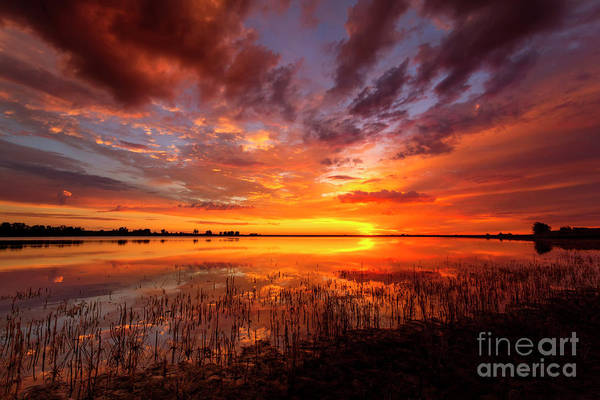 Wall Art - Photograph - Vivid Colorful Sunrise Or Sunset Reflecting In A Lake by Ronda Kimbrow