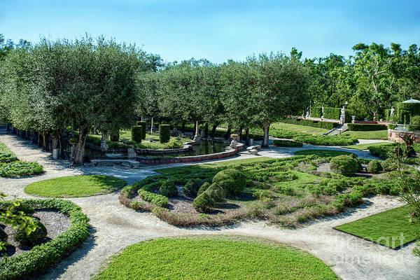 Photograph - Vizcaya Garden by Ed Taylor