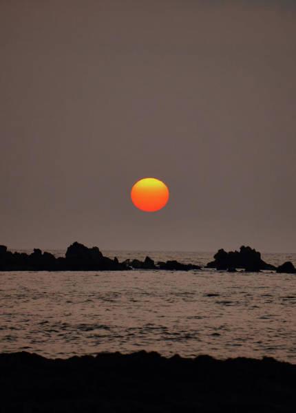 Photograph - Voggy Sunset by Pamela Walton