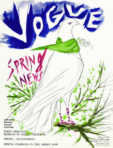 Wildlife Photograph - Vogue Cover Illustration Of A Dove Wearing by Marcel Vertes