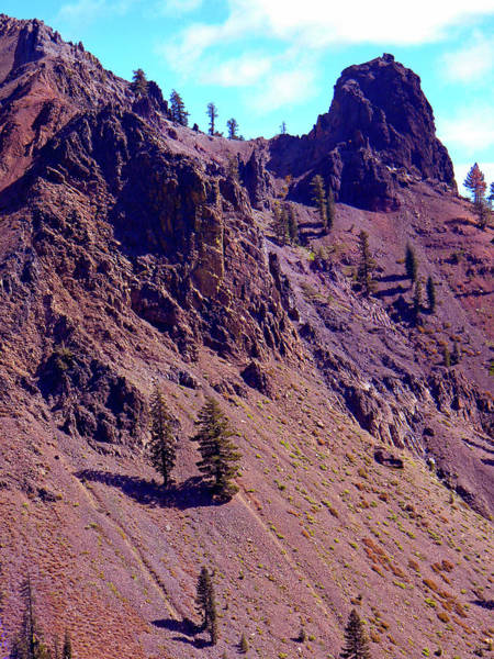 Photograph - Volcanic Slopes by Frank Wilson