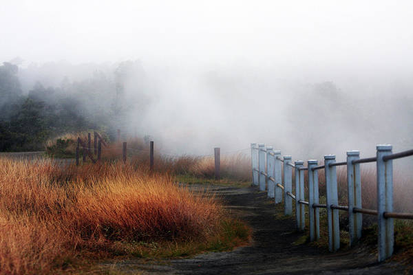Big Island Photograph - Volcano Fence by Ty Helbach