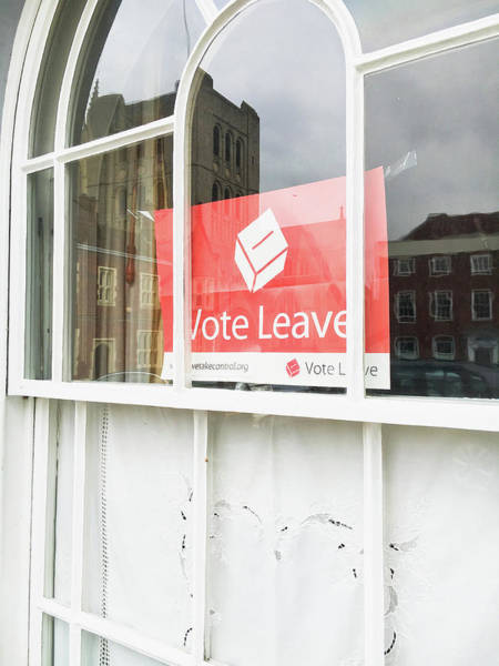 Poll Photograph - Vote Leave by Tom Gowanlock
