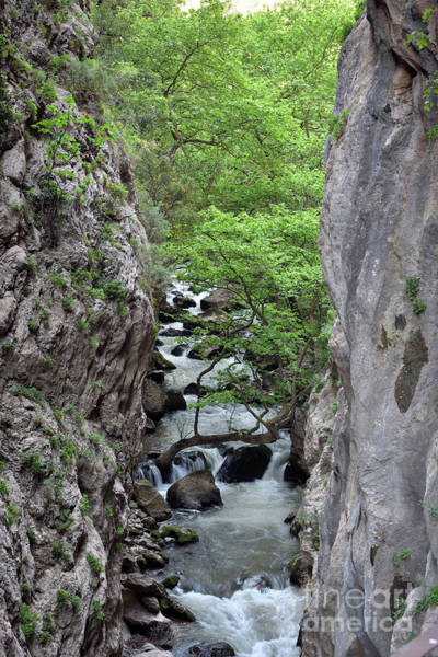 George Canyon Photograph - Vouraikos Gorge by George Atsametakis