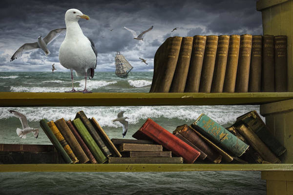 Photograph - Voyage Into The World Of Books by Randall Nyhof