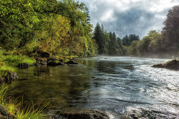 Photograph - Vying For The Day by Belinda Greb