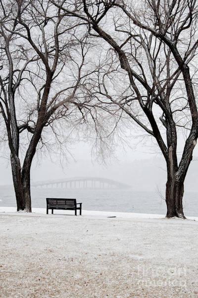 Photograph - W R Bennett Bridge by David Emond