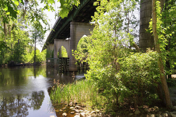 Photograph - Waccamaw Memorial Bridge By The Riverbank In May by MM Anderson