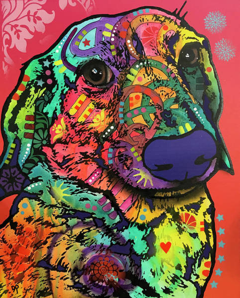 Painting - Waffle Dachshund by Dean Russo Art