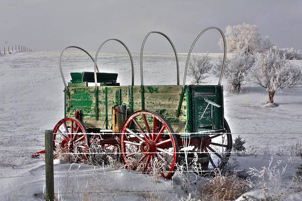 Photograph - Wagon by David Matthews