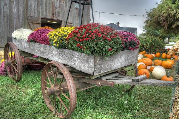 Wall Art - Photograph - Wagon Farm Mums Pumpkin Agriculture Barn by Jane Linders
