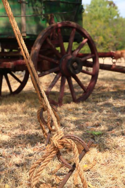 Wagon Wheel Photograph - Wagon Stake by Toni Hopper