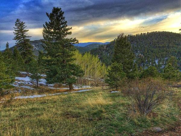 Photograph - Wagon Trail by Dan Miller