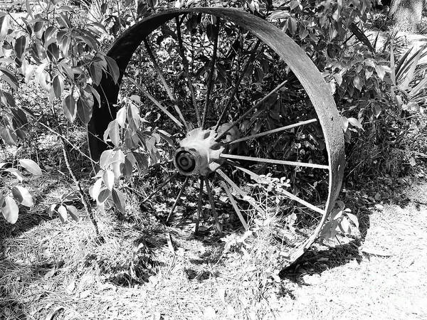 Photograph - Wagon Wheel In B W by D Hackett