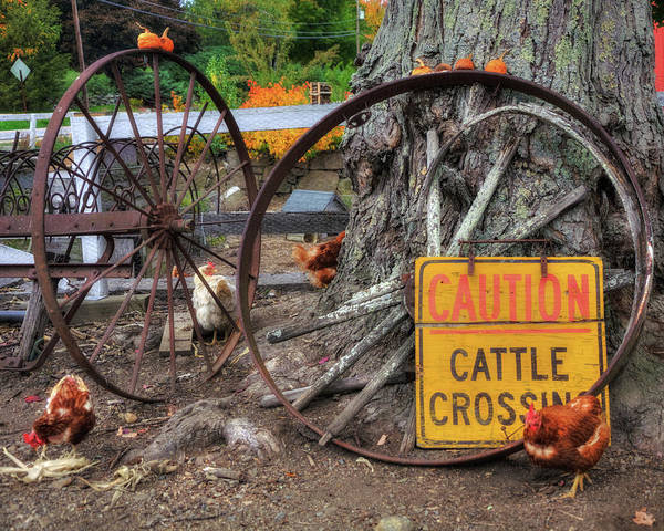 Photograph - Wagon Wheels And Chickens - Farm Scenes by Joann Vitali