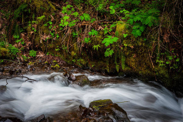 Photograph - Wahkenna Creek by Harry Spitz