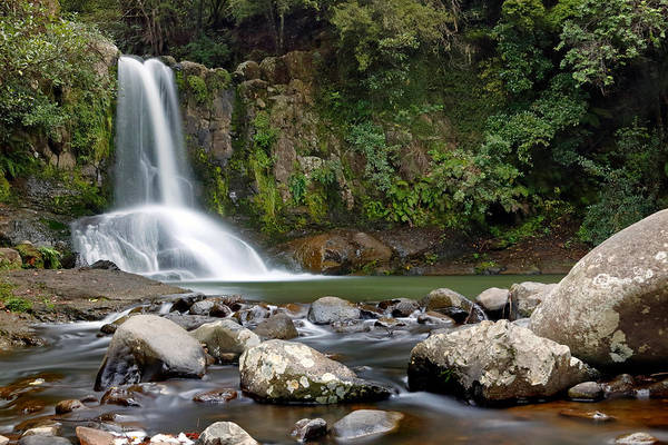 Photograph - Waiau Falls by Nicholas Blackwell