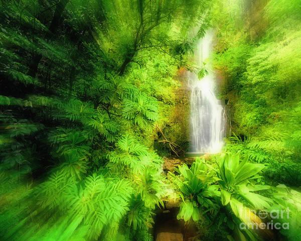 Photograph - Wailua Green by Edmund Nagele