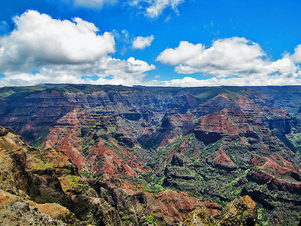 Photograph - Waimea Canyon Hawaii by Bob Slitzan