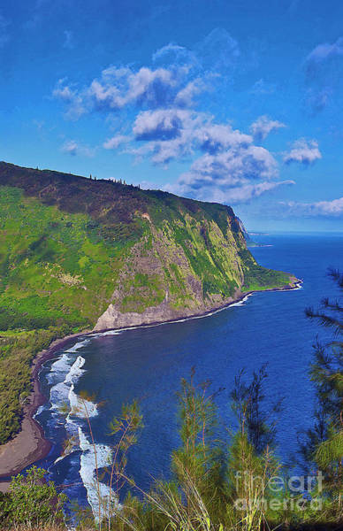 Photograph - Waipio Overlook by Bette Phelan