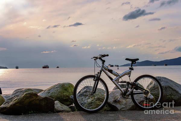 Canada Wall Art - Photograph - Waiting For A Friend 1 by Viktor Birkus