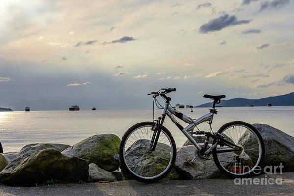 Canada Wall Art - Photograph - Waiting For A Friend 2 by Viktor Birkus