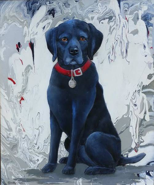 Black Lab Mixed Media - Waiting For A Walk by Cindy Parris