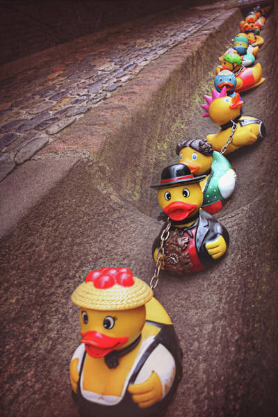 Rubber Ducky Photograph - Waiting For Rain  by Carol Japp