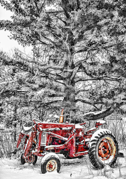 One Of A Kind Photograph - Waiting For Spring by Paul Freidlund