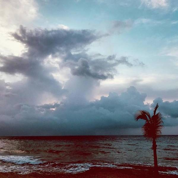 Wall Art - Photograph - Before The Storm by Gina Callaghan