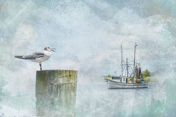 Photograph - Waiting On Your Ship To Come In by Jai Johnson