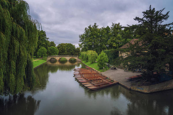 Photograph - Waiting Punts by James Billings