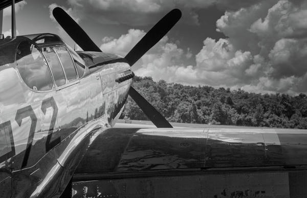 Wall Art - Photograph - Waiting To Fly by Patrick  Flynn