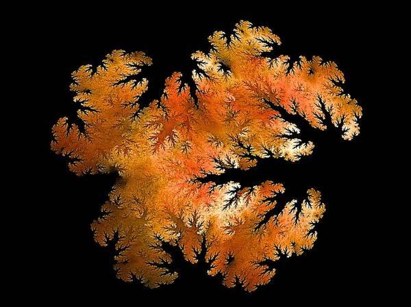 Wake Digital Art - Waking In Mandelbrot Forest-2 by Doug Morgan