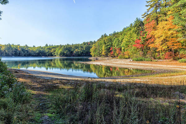 Photograph - Walden Pond by Brian MacLean