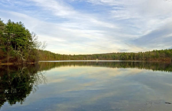 Photograph - Walden Pond by Frank Winters