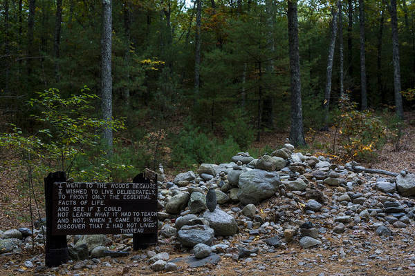 Photograph - Walden Pond House Site Concord Ma by Toby McGuire