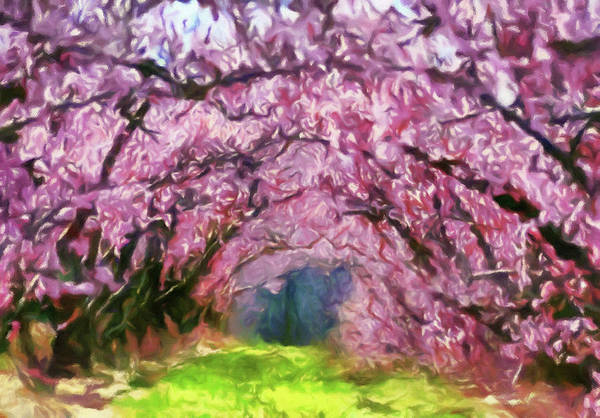 Painting - Walk Through Blossom Trees by Isabella Howard