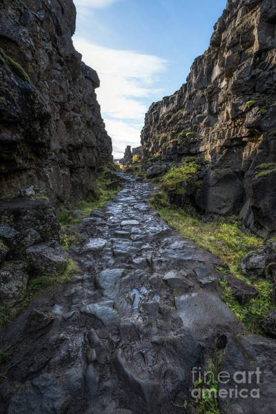 Photograph - Walk Through Pingvellir  by Michael Ver Sprill
