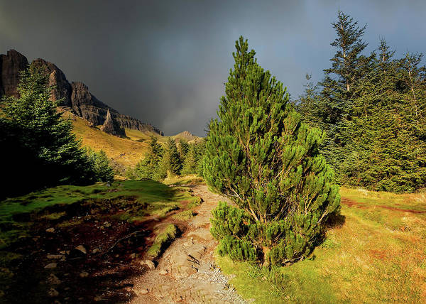 Inner Photograph - Walk To Storr by Smart Aviation