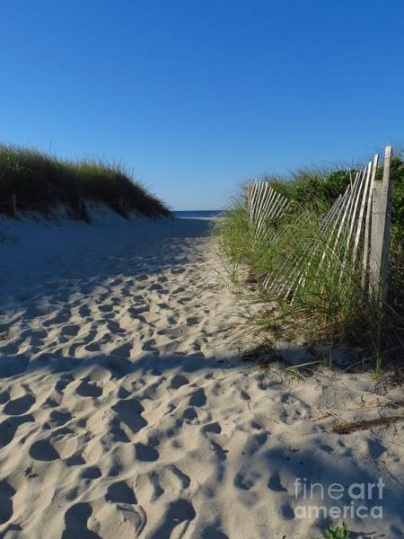 Photograph - Walk To The Beach by Donna Cavanaugh