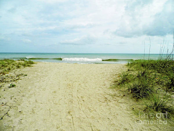 Photograph - Walk To Vero Beach by D Hackett