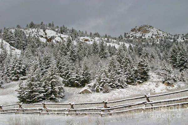 Photograph - Walkin In A Winter Wonderland by Katie LaSalle-Lowery