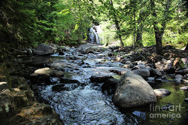 Somerset County Photograph - Walking Along Houston Brook Falls by Sandra Huston