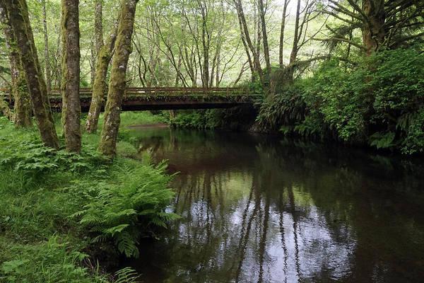 Photograph - Bridge Over Peaceful Waters #2 by Ben Upham III
