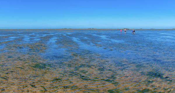 Photograph - Walking In The Mudflats Near Hooge by Sun Travels